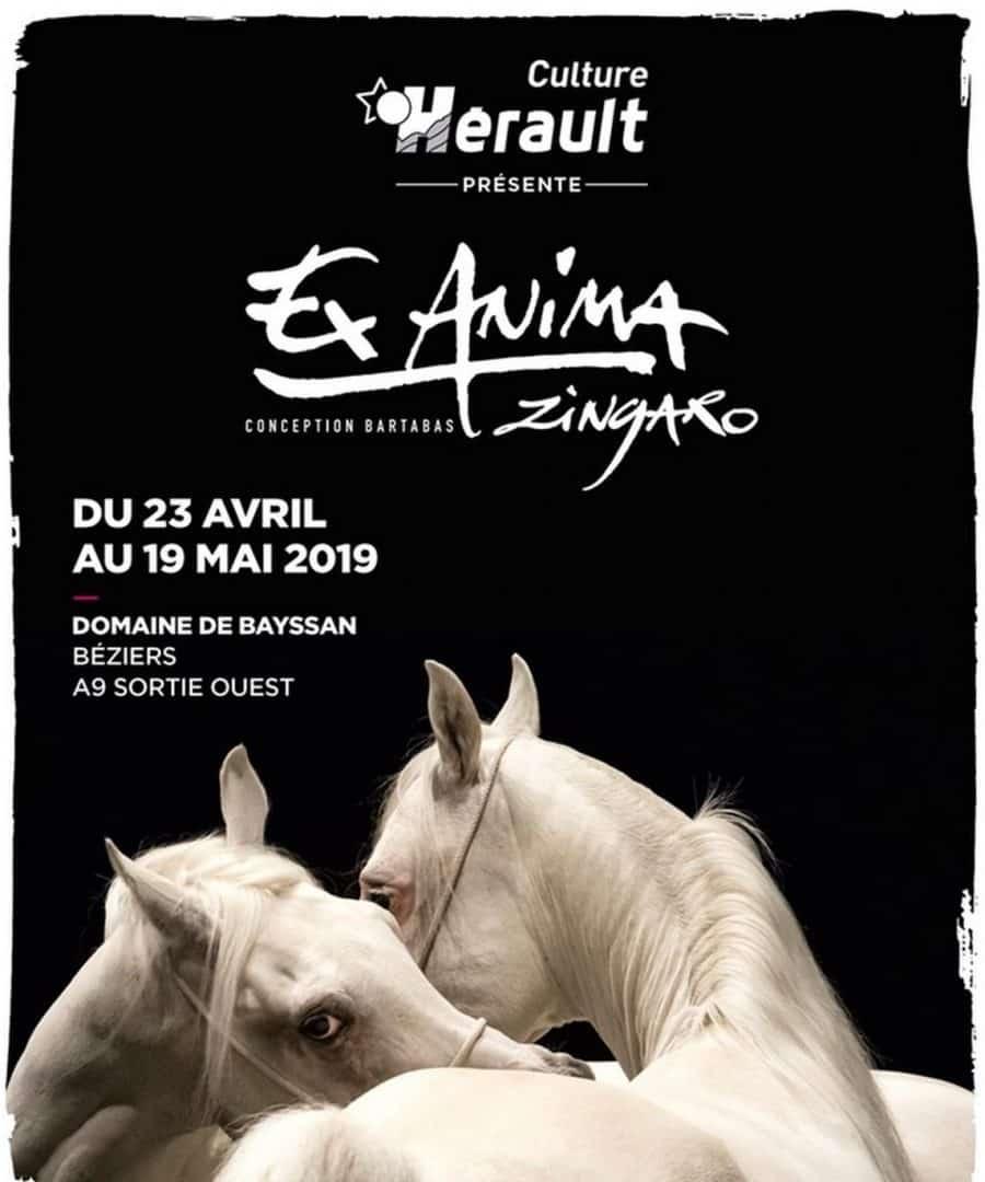 Ex Anima, le dernier spectacle de Zingaro au domaine départemental de Bayssan à Béziers